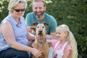 pet plan ltd murphy and family
