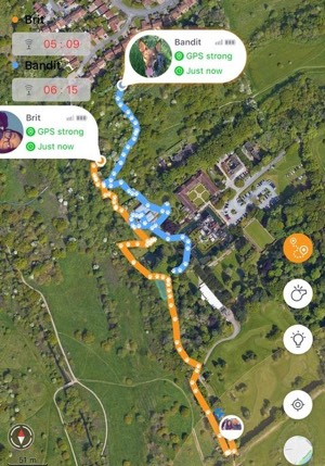 Pawfit tracker on mobile phone