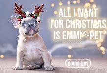 EMMI Pet french bulldog